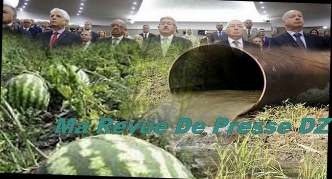 irrigation pastéque